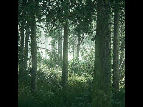 ⭐ Без категории   Живые обои [TLOU2] Beautiful Forest (HD)   Скачать бесплатно   На рабочий стол ⭐