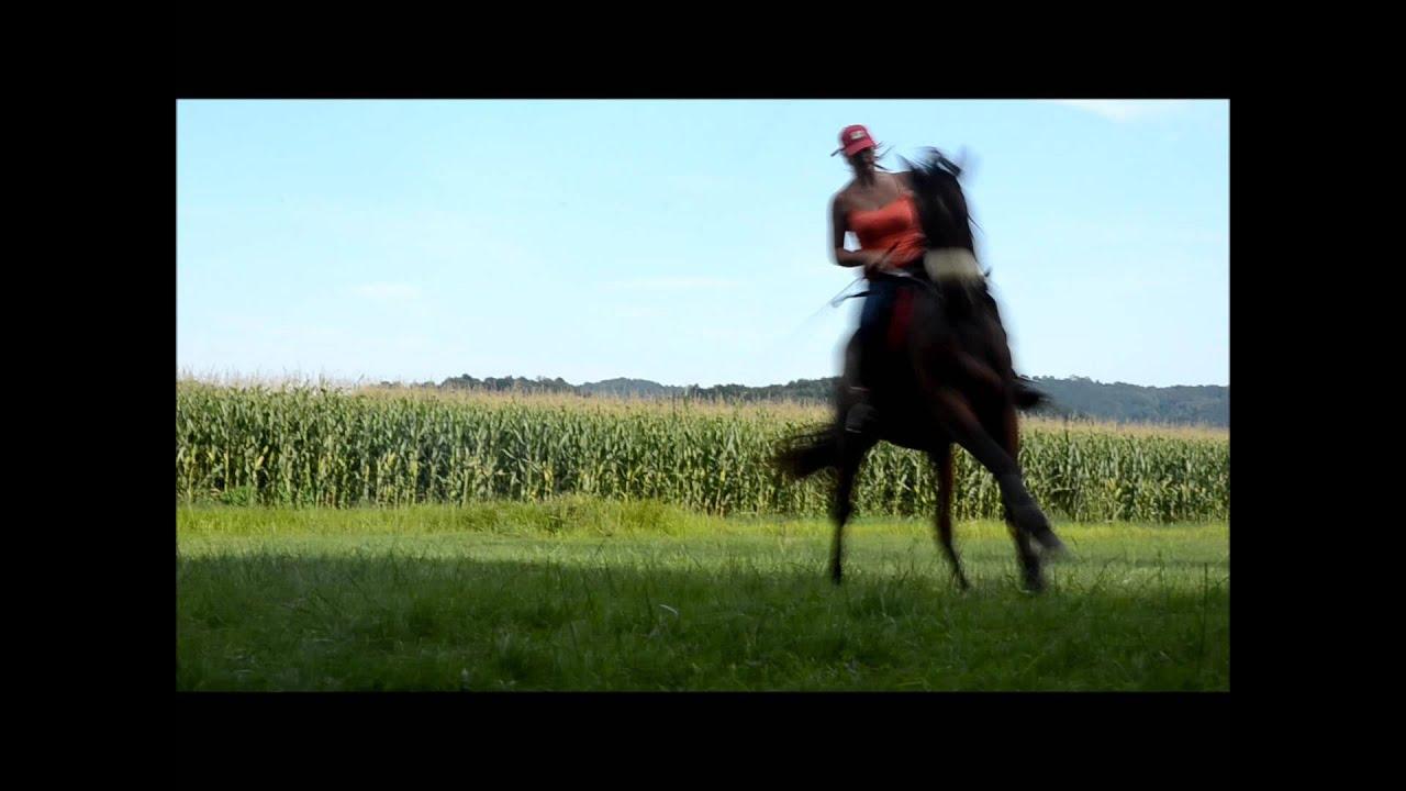Equin changement de pied en l 39 air youtube for Cheserex piscine
