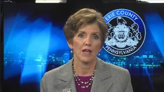 2016 State of the County Address - Kathy Dahlkemper, County Executive