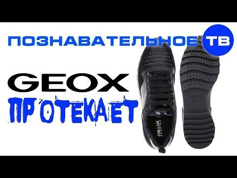 Почему я выкинул ботинки GEOX (Познавательное ТВ, Артём Войтенков)