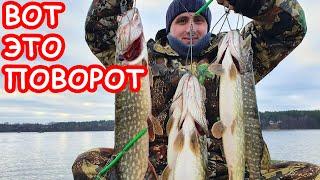Как поймать щуку зимой на спиннинг Самое загадочное озеро Беларуси Рыбалка 2020