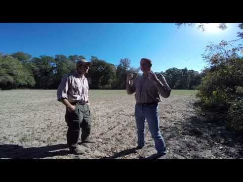 Florida's WMAs And What FWC Does To Manage The Habitat And Wildlife