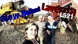 New Holland TX 34 VS Laverda L521 * Rice and Soybean harvest *