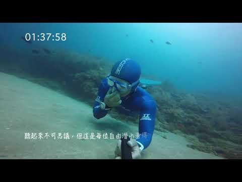 三分鐘簡單介紹自由潛水