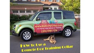 How To Use A Remote Dog Training Collar For Beginners By Bobs Pet Stop
