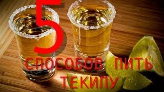 5 способов пить текилу | Как правильно пить текилу
