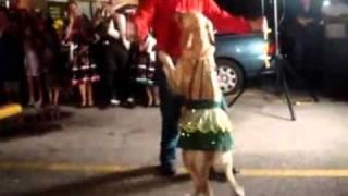 Perro Bailando Merengue