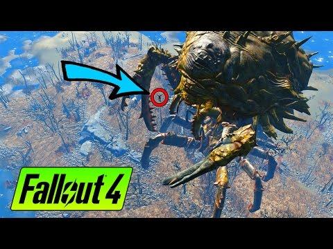 Fallout 4 - SECRET ISLAND AREAS!!!