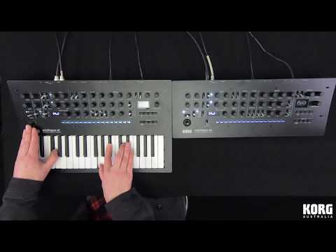 KORG: minilogue xd Keyboard + minilogue xd Module Poly Chained