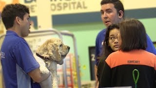 Fake Pet Smart Employee Prank!
