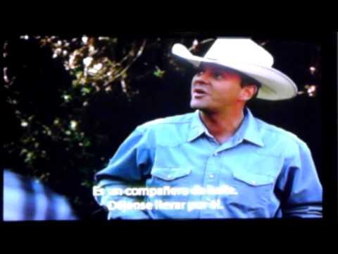 Cowboy up  zapata 1ra parte