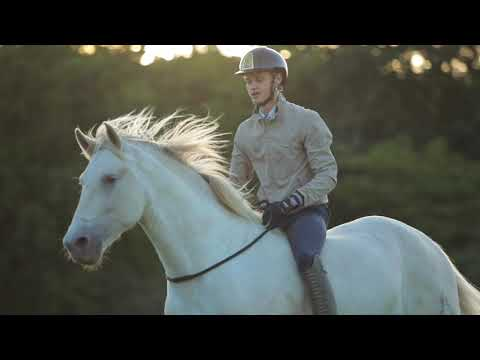 "SPECIAL VIDEO: ""My Beautiful Horse Antares.."""