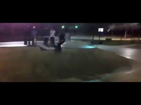 Palo alto skatepark / Martinez skatepark (thug-nastier)