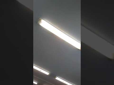 Замена ламп светильника (Армстронг) дневного света на свето диодные лампы