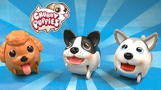 Chubby Puppies From Spin Master