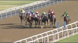 Vidéo de la course PMU PRIX GOLD CIRCLE HORSES TO FOLLOW PODCAST QUALIFIED MAIDEN PLATE