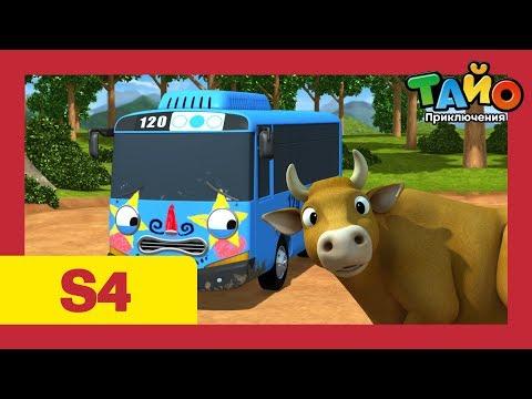 Приключения Тайо сезон 4 l серия 17 Тайо выезжает за город l тайо маленький автобус на русском