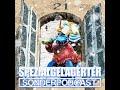 Spezialgelagerter Adventskalender – Tür 21: Die 13 1/2 Leben des Käpt'n Blaubär