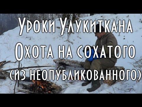 ОХОТА НА ЛОСЯ, СОХАТОГО, ПО ЭВЕНКИЙСКИ, уроки Улукиткана