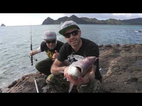 Fishing & Adventure Season 4 Ep 10 - COROMANDEL Landbased