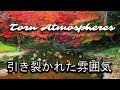Torn Atmosphere mp3-Yung Sherman inspired Chill Cloud Vibe 'Type Beat'