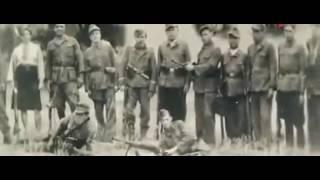 Украина в огне фильм Оливера Стоуна