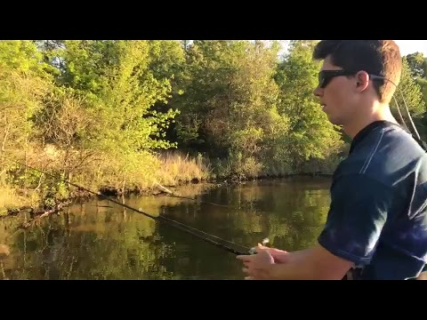 Live bed fishing with jon b youtube for Lunkerstv fishing rods