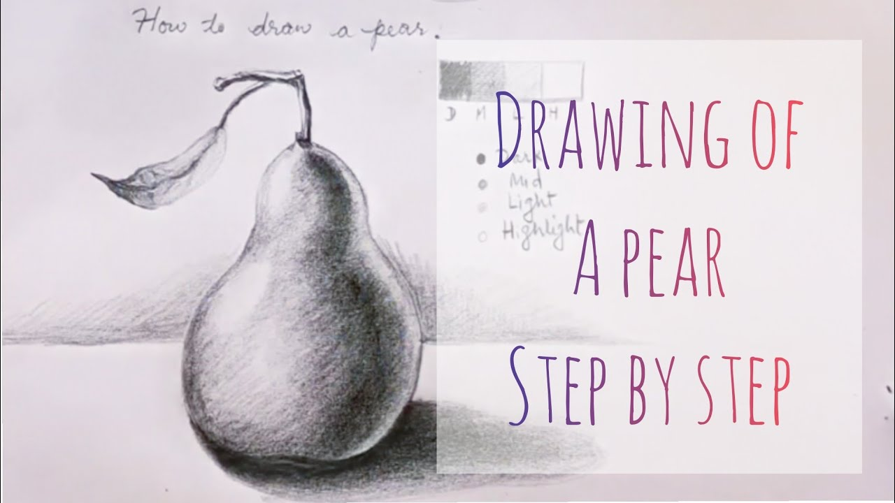 How To Draw A Pear, Drawing Lesson #6.
