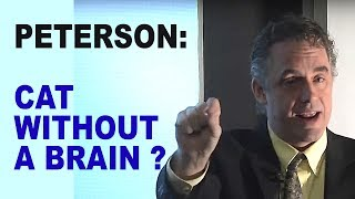 Jordan Peterson: What Does Your Hypothalamus Do?