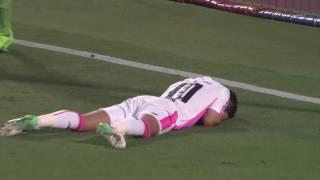 2017年7月2日(日)に行われた明治安田生命J1リーグ 第17節 甲府vs鳥...