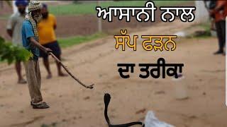 Dangerous Cobra snake video (by narinder 22) _ mahol punjab