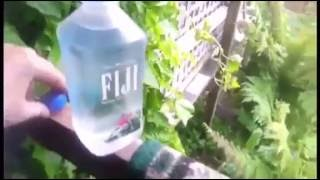 switching my nan s fiji water with tap water epic prank