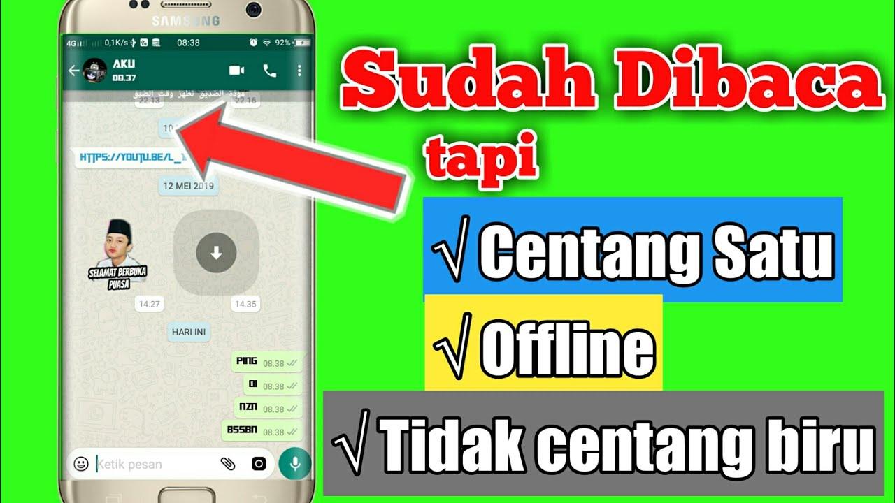 Cara Menyembunyikan Status Online Di Wa Plus - status wa galau