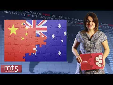 Обзор рынка Форекс на 19 ноября. Обзор валютных пар #EURUSD, #AUDUSD и #NZDUSD. #аналитикаmt5