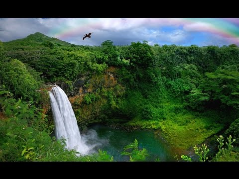 Водопады острова  Кауаи. Гавайи, США. Waterfalls of Kauai island. Hawaii, USA.