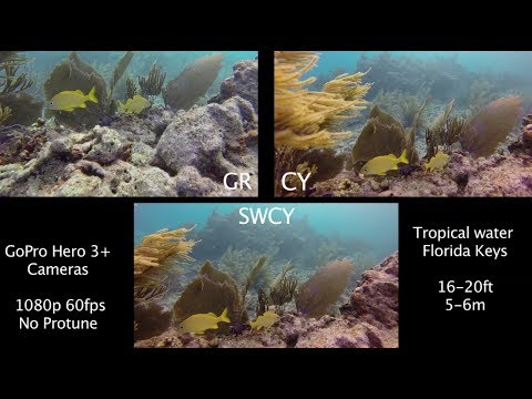 srp-gr-vs-cy-vs-swcy-underwater-filter-comparison---gopro-tip-#306-|-micbergsma