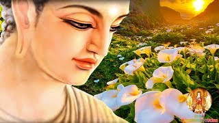 Muốn Tướng Mạo Xinh Đẹp Cao Sang -  Hãy Làm Theo Lời Phật Dạy -  Để Có Cuộc Sống An Vui Hạnh Phúc
