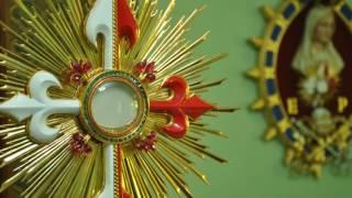 Baixar Top 15 Musicas Catolicas Adoração ao Santissimo 2017