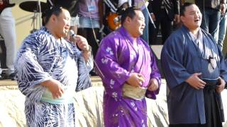 2013年5月5日(日)、練馬・光が丘公園で行われたハヤリンバヤル2013に...