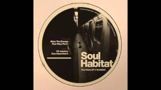 Soul Habitat - Raw Vibez Part 2