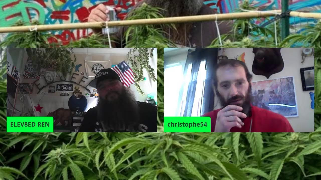 Download * THE ROAD TO 710! * ... * #420PARTY * ... * PANEL PARTY *