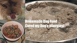 Homemade Dog Food Recipe! [Cured my Dog's allergies]
