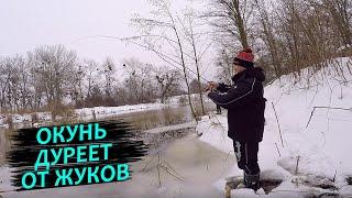 ОКУНЬ СОШЕЛ С УМА ОТ ЭТИХ ЖУКОВ Рыбалка на окуня 2021 Ловля окуня зимой на спиннинг