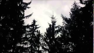 Pagan Reign - Prolog (Instrumental)