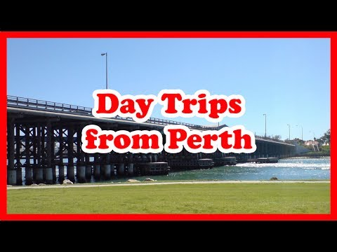 5 Top-Rated Day Trips from Perth, Western Australia | Australia Day Tours Guide