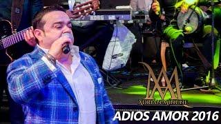 Adrian Minune - Adios Amor HIT 2016