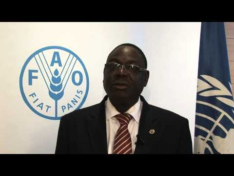 M. Mahama Zoungrana, Ministre de l'agriculture et de la sécurité alimentaire, Burkina Faso