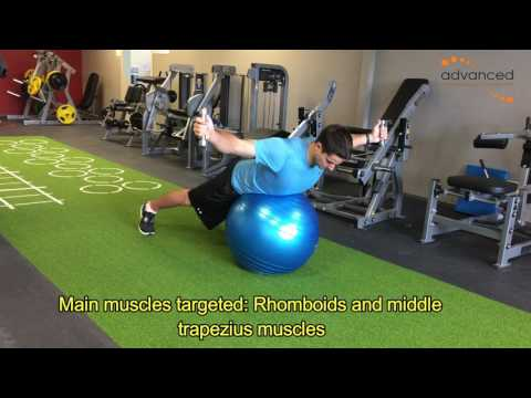 SHOULDER EXERCISES Prone T DB on Ex Ball