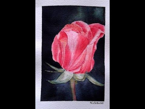 Come Dipingere Una Rosa Rossa Su Sfondo Nero Ad Acquerello Youtube
