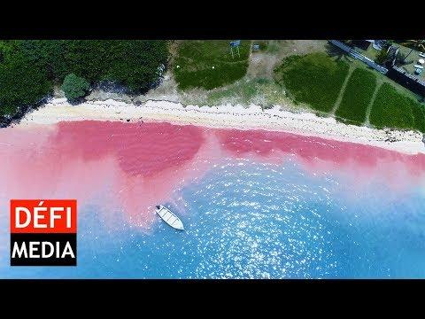 Blue-Bay : La mer rouge vue du ciel
